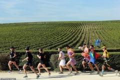 Os corredores percorrem cenários bucólicos entre os vinhedos